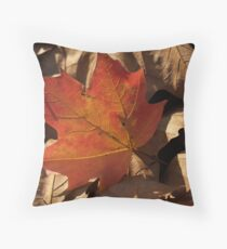 Sugar Maple Leaf  backlit in Dry Leaves Throw Pillow
