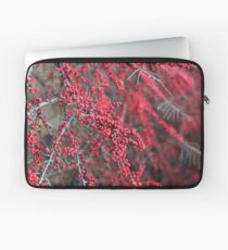 Red berries in Cambridgeshire, England Laptop Sleeve