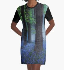 Misty Blue Graphic T-Shirt Dress