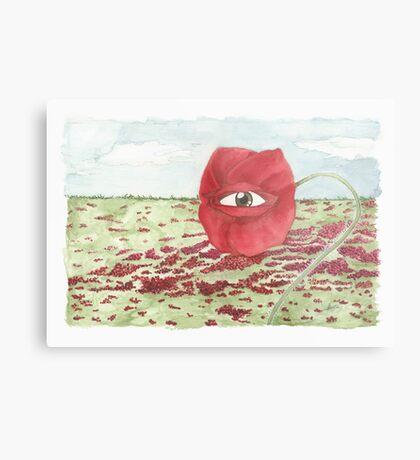 In a field of blind poppies, one eye is king Metal Print
