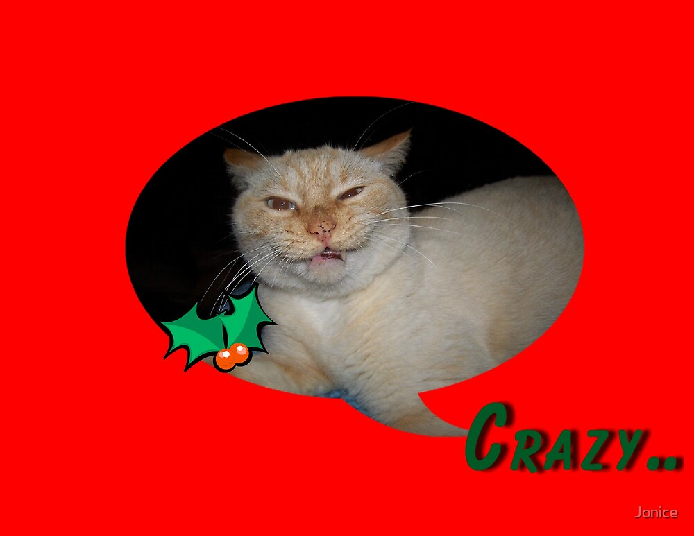 Crazy Cat Christmas Card by Jonice