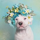 Flower Power, Parley by SophieGamand
