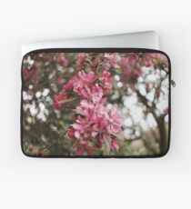 Spring cherry blossom - Cambridgeshire, England Laptop Sleeve