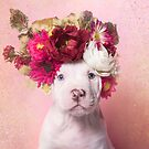 Flower Power, Ruffles by SophieGamand