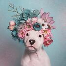 Flower Power, Salty by SophieGamand