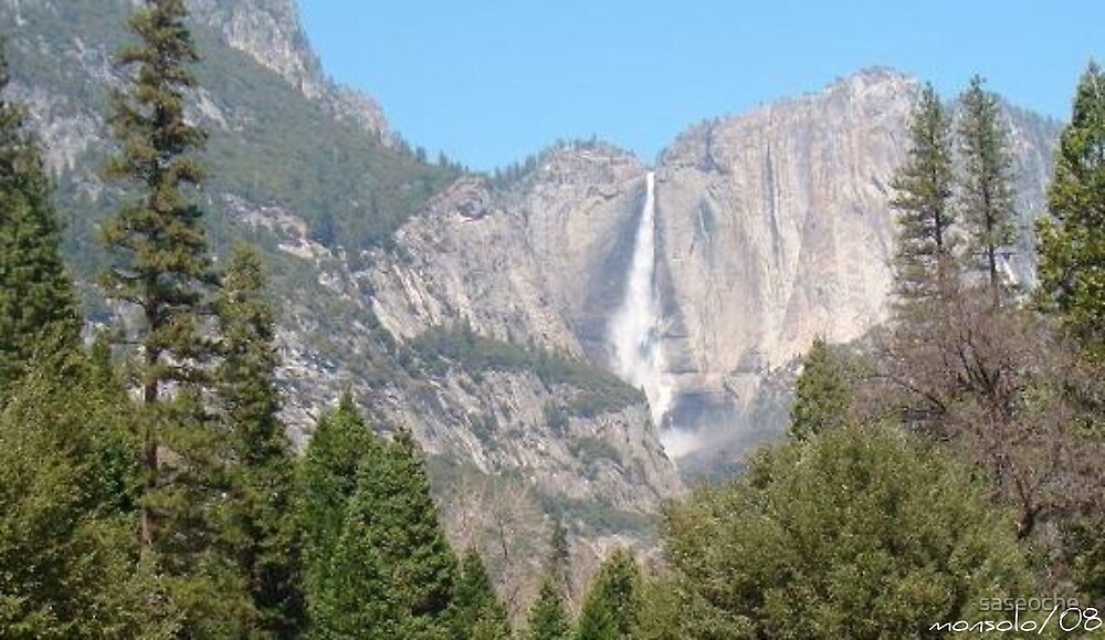 Water Falls by saseoche