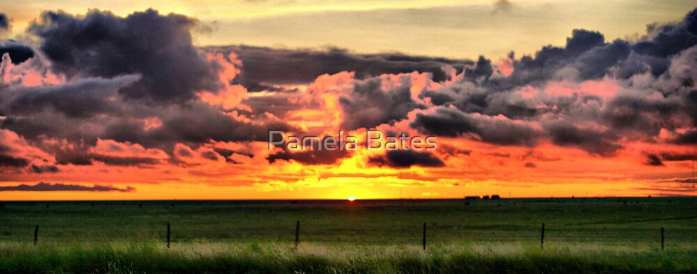 Storm's Brewing by Pamela Bates