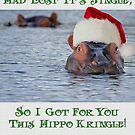 XMas Card- Your Xmas Lost It's Jingle by JungleCrews