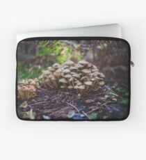 Woodland fairy mushrooms in Thetford forest, England Laptop Sleeve