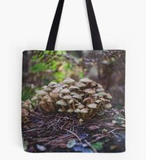 Woodland fairy mushrooms in Thetford forest, England Tote Bag
