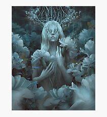 White Crown Photographic Print