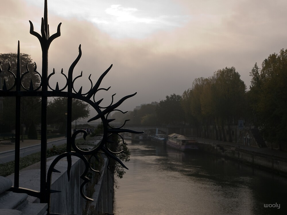 Fog over the River Seine by wooly
