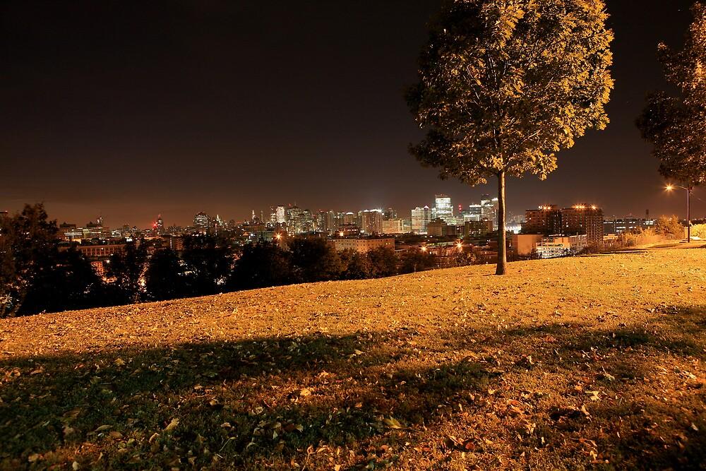 a night for dreams, a dream's night~ by pmarella