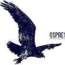 Osprey Taking Flight by Jared Manninen