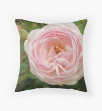 David Austin Rose Throw Pillow