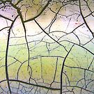 Cracked Paint 1 by Paul Todd