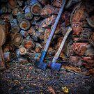 Wood Heap by Steven Maynard