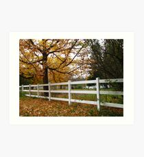 The White Fence Art Print
