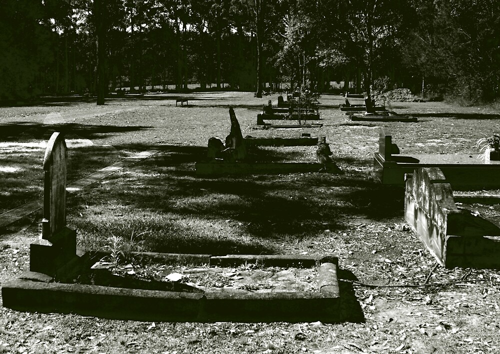 the cemetery at Martinsville by adam pearson