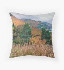 Autumn in the Highlands of Nova Scotia Throw Pillow