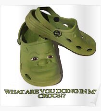 What are you doing in my Shrek Crocs Poster