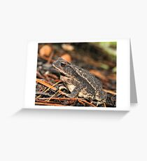 Toad 1 Greeting Card