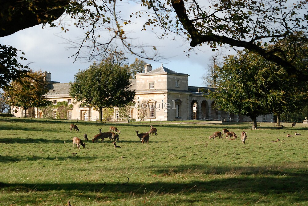 Studley Royal - The Stables by dougie1