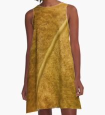 Golden Spine A-Line Dress