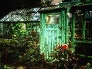 Grandads Garden by Simon Duckworth