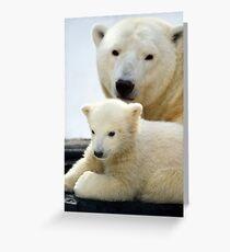 Polar bear cub with his mom Greeting Card