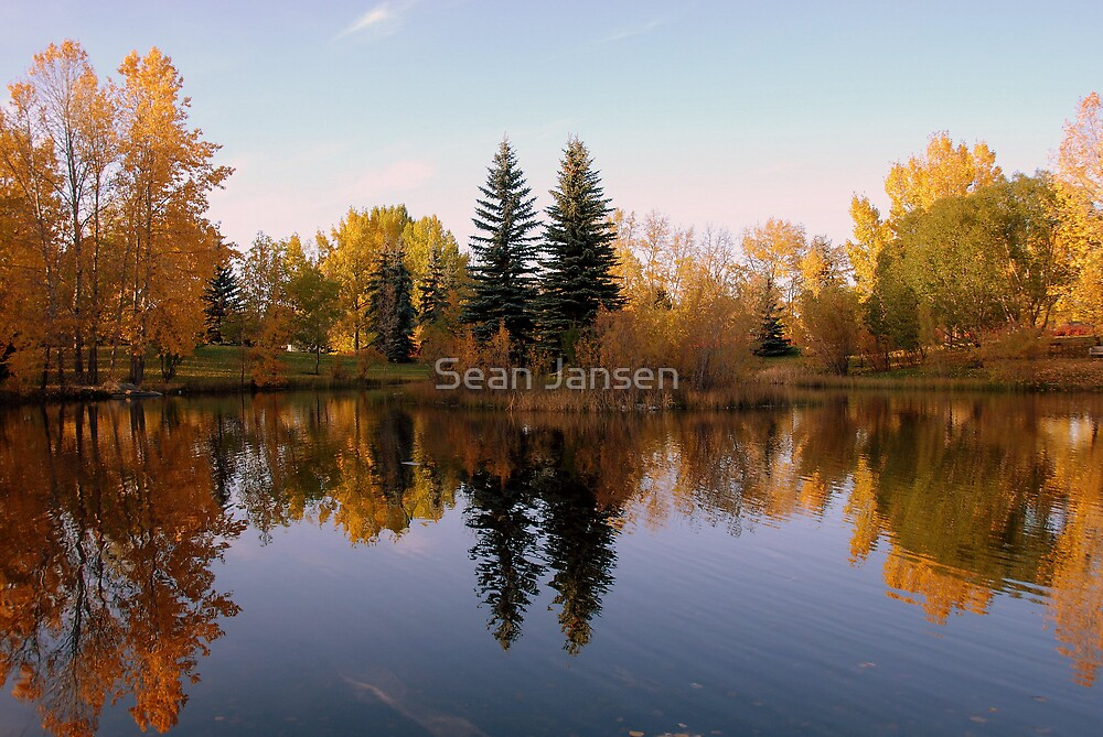 The Leaves of fall by Sean Jansen