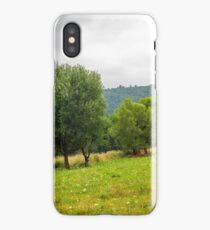 haystack near trees on hillside meadow  in mountains iPhone Case/Skin