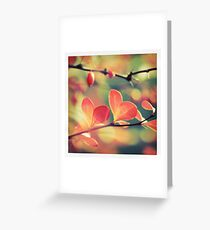 - Goodbye Summer - Greeting Card