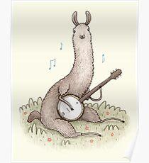 Banjo Lama Poster