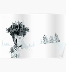 Snow Queen of Narnia Poster