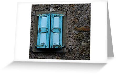 THE BLUE SHUTTERS by June Ferrol