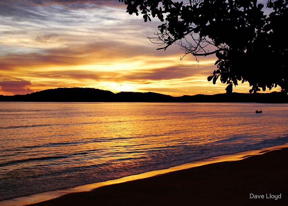 Golden Sunset by Dave Lloyd