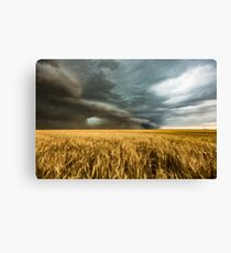 Earth Mover Canvas Print