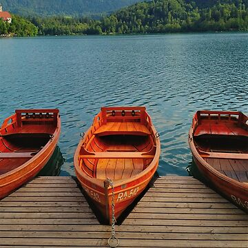 Lake Bled Boats by TalBright