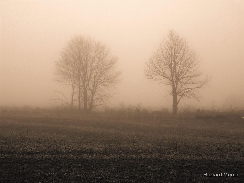 A Warming Moment by Richard Murch