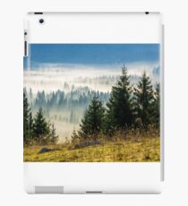 coniferous forest in foggy Romanian mountains iPad Case/Skin