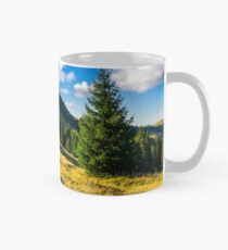 conifer forest  in mountains at sunrise Classic Mug