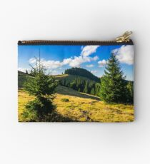 conifer forest  in mountains at sunrise Studio Pouch