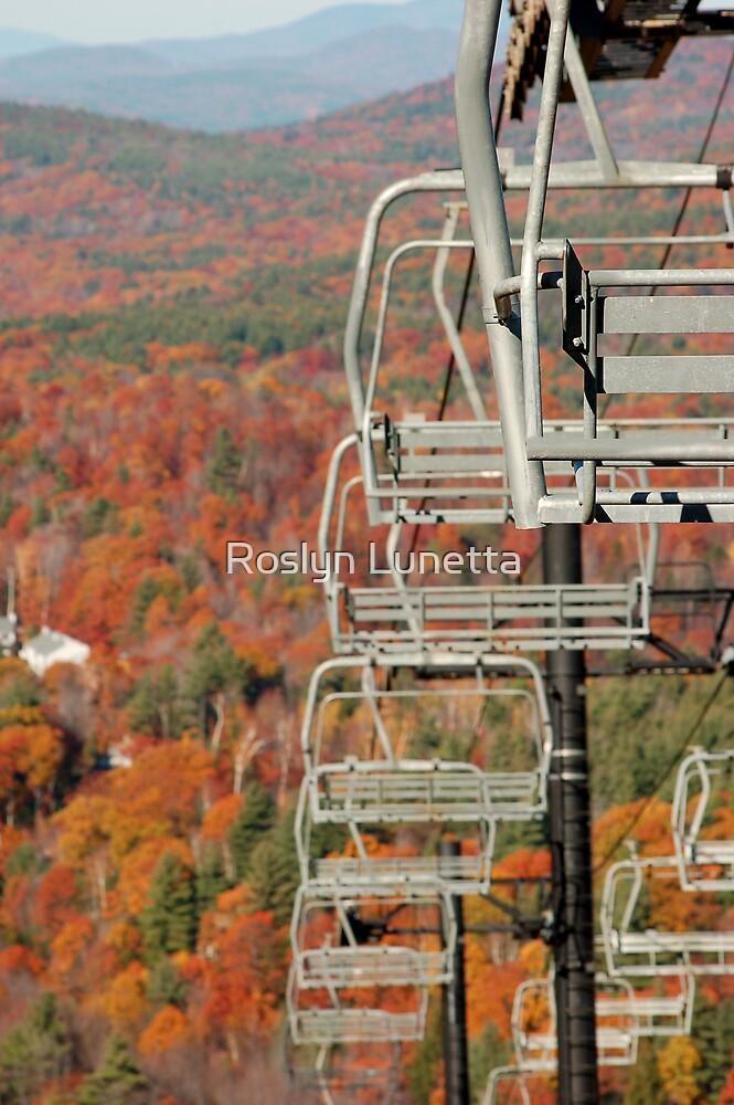 bokeh ski lift by Roslyn Lunetta