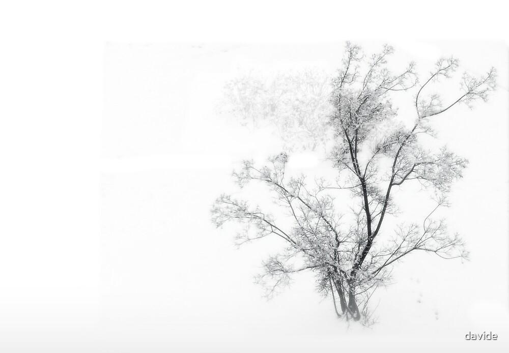 Yuki #1 by Davide Montellanico