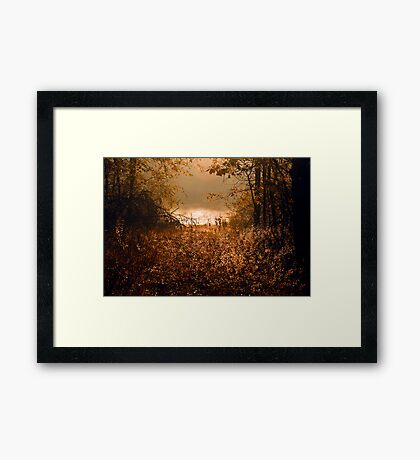 """Nothing Gold Can Stay"" Framed Print"