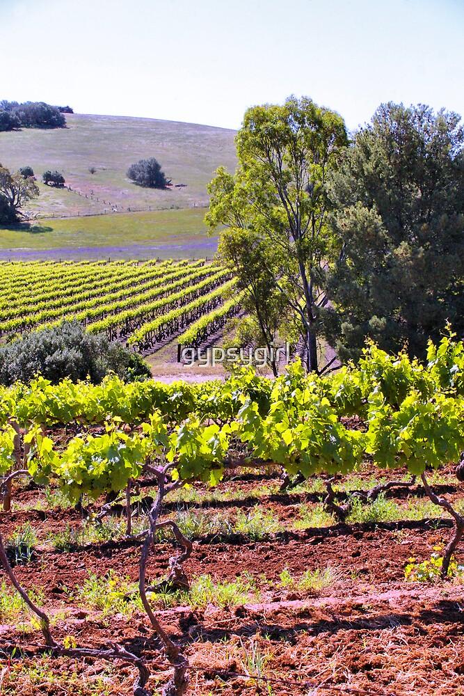 Vines by gypsygirl