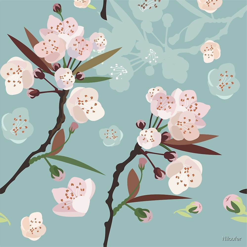 Cherry Blossoms by Niloufer