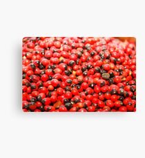 red spice background Canvas Print