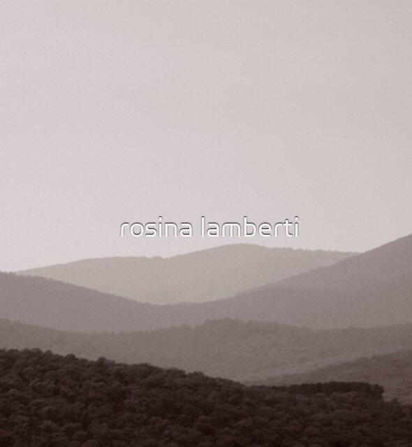 No colour by Rosina  Lamberti